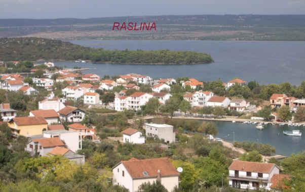 Raslina
